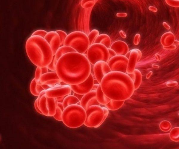 Застой крови в сосудах